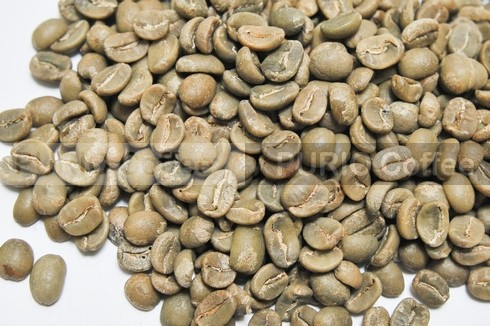 nhan moka green bean coffee